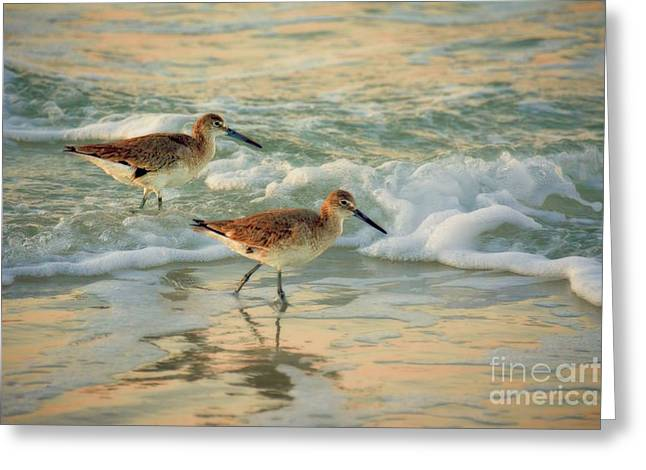 Florida Sandpiper Dawn Greeting Card by Henry Kowalski