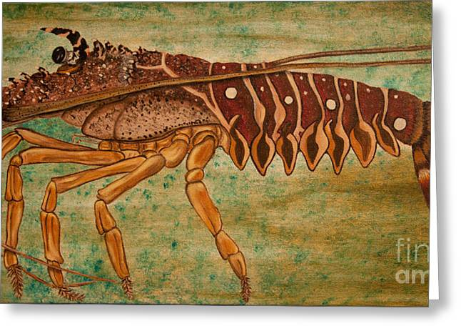 Florida Spiny Lobster Greeting Card by Susan Cliett