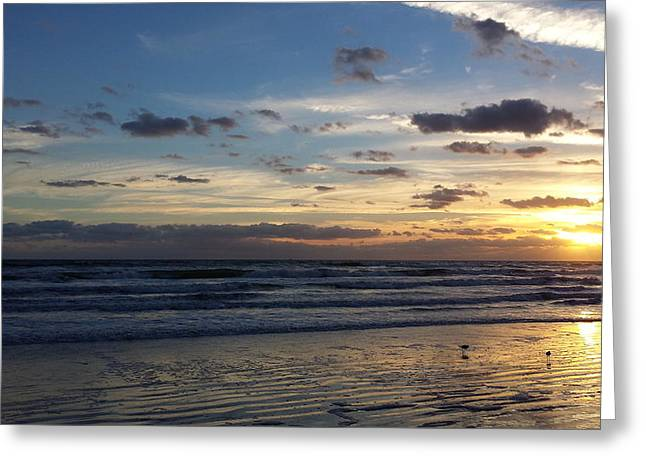 Greeting Card featuring the photograph Florida Sunrise by Ally  White
