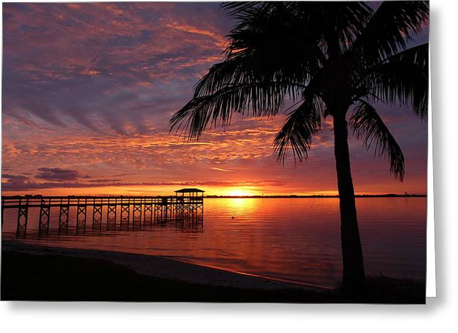 Greeting Card featuring the photograph Florida Sunset by Elaine Franklin