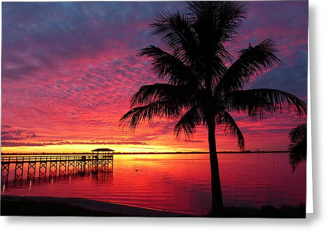Greeting Card featuring the photograph Florida Sunset II by Elaine Franklin