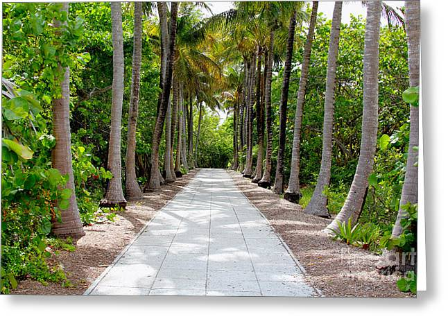 Florida Walkway Greeting Card by Carey Chen