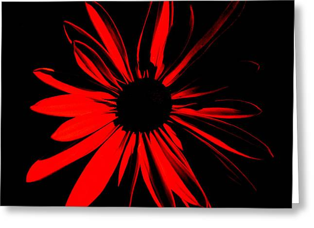 Greeting Card featuring the digital art Flower 2 by Maggy Marsh
