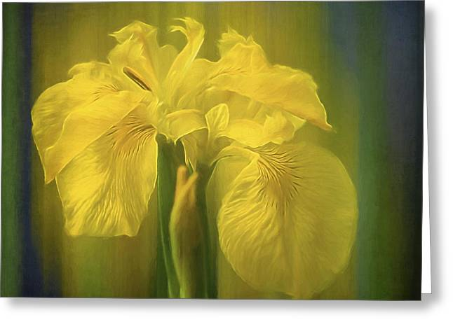 Flower Art - The Color Of Love Greeting Card by Jordan Blackstone