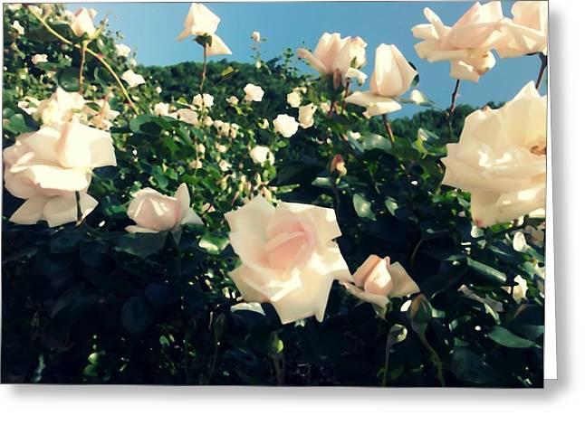 Flower Bush  Greeting Card by Kiara Reynolds
