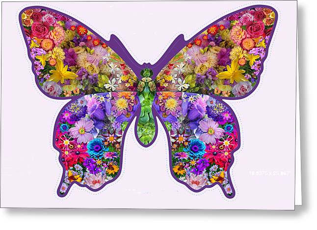 Flower Butterfly Greeting Card by Alixandra Mullins
