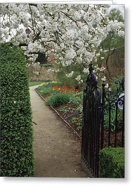 Flower Garden, York, North Yorkshire Greeting Card by Panoramic Images
