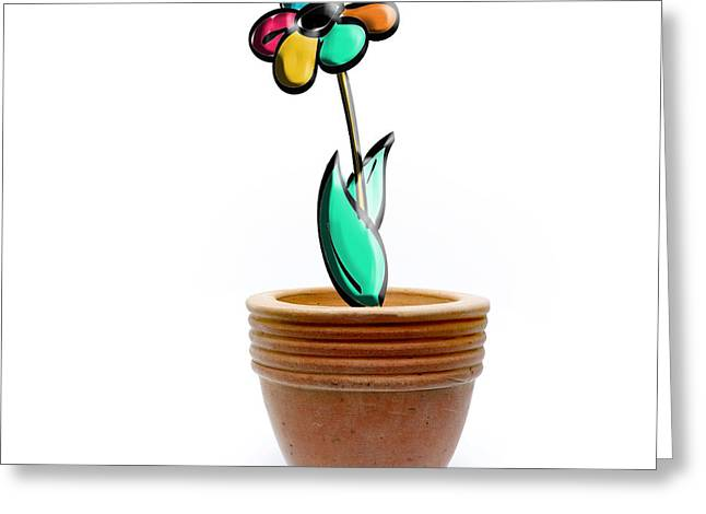 Flower In A Pot. Concept Greeting Card
