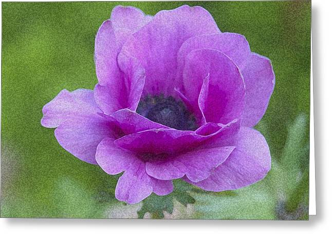 Flower In Bloom Greeting Card