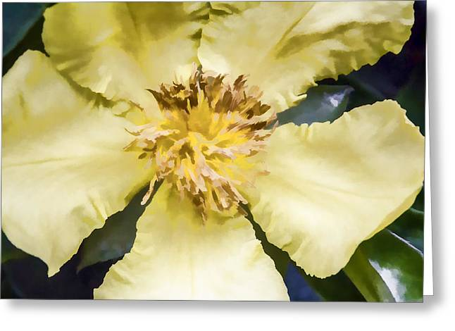 Greeting Card featuring the digital art Flower In Pastel by Photographic Art by Russel Ray Photos