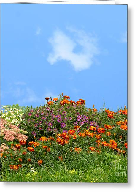 Flower Landscape Art Greeting Card by Boon Mee