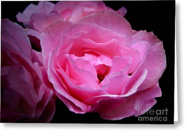 Flower Light Greeting Card by Lutz Baar