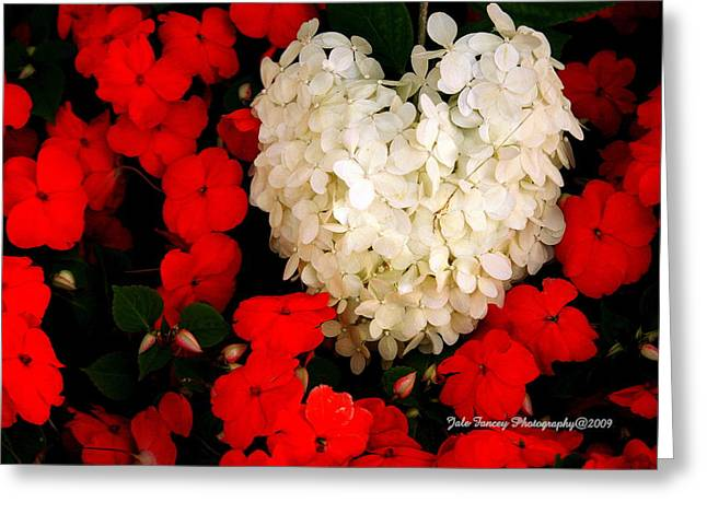 Flower Of My Heart Greeting Card