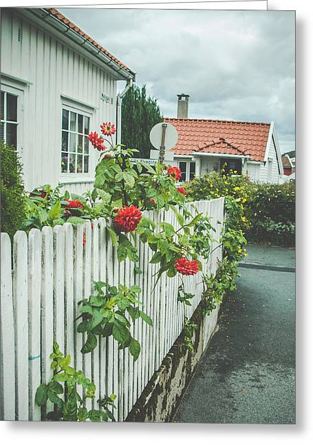 Flower On The Fence Greeting Card