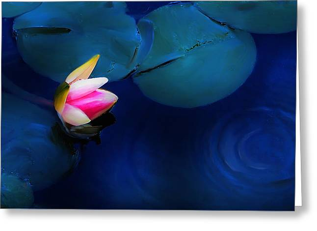 Flower On The Lily Greeting Card by Cary Shapiro
