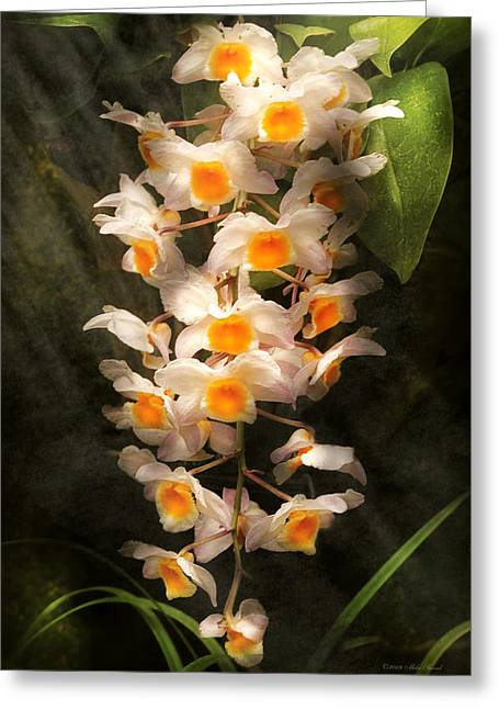 Flower - Orchid - Dendrobium Orchid Greeting Card by Mike Savad