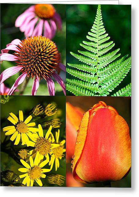 Flower Photo 4 Way Greeting Card