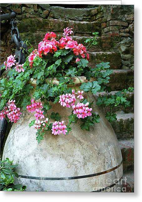 Greeting Card featuring the photograph Flower Pot 8 by Allen Beatty