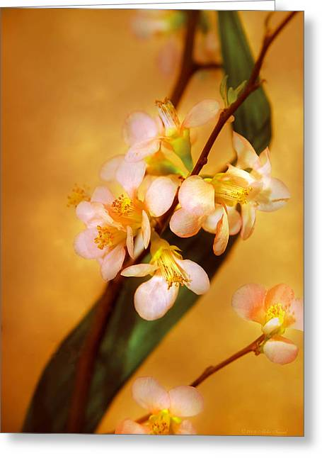 Flower - Sakura - A Touch Of Spring Greeting Card by Mike Savad