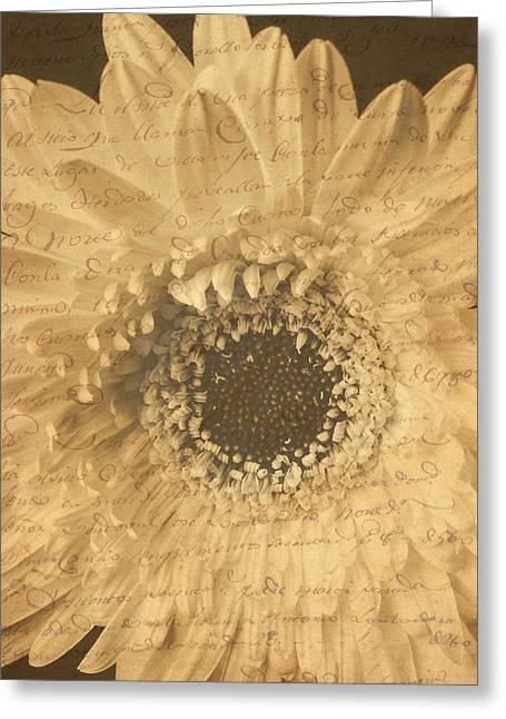 Flower Secrets Greeting Card by Garry Gay