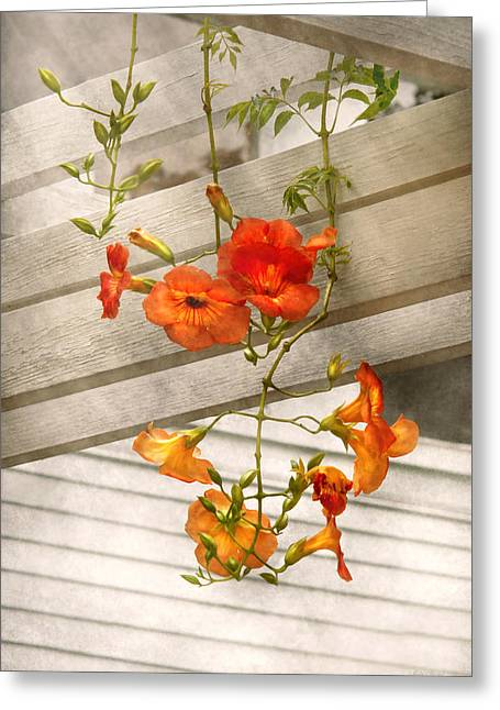 Flower - Trumpet Melodies Greeting Card by Mike Savad