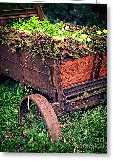 Flower Wagon Greeting Card by Edward Fielding