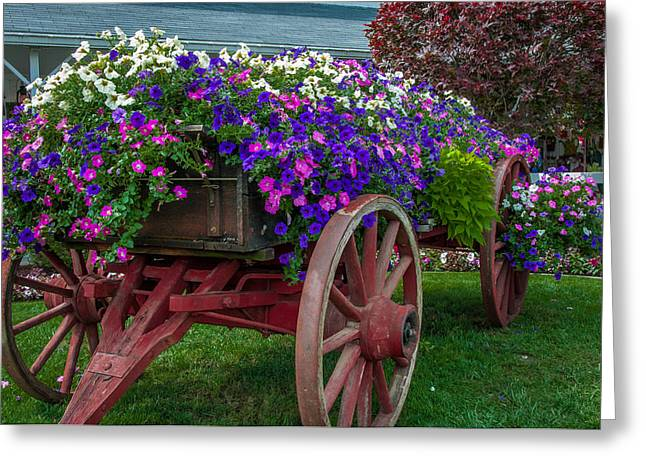 Flower Wagon Greeting Card by Gene Sherrill