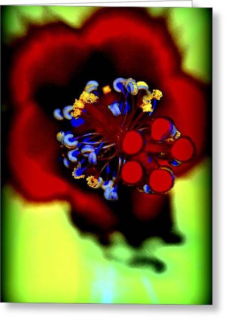 Flower With'in Greeting Card by Kathy Sampson