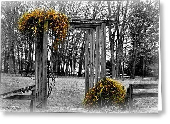 Greeting Card featuring the photograph Flowering Archway by Tara Potts