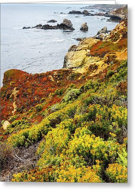 Flowering Coastline Greeting Card by Tom Norring