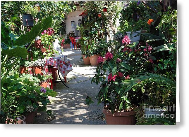 Flowering Entrance Greeting Card by Andrea Simon