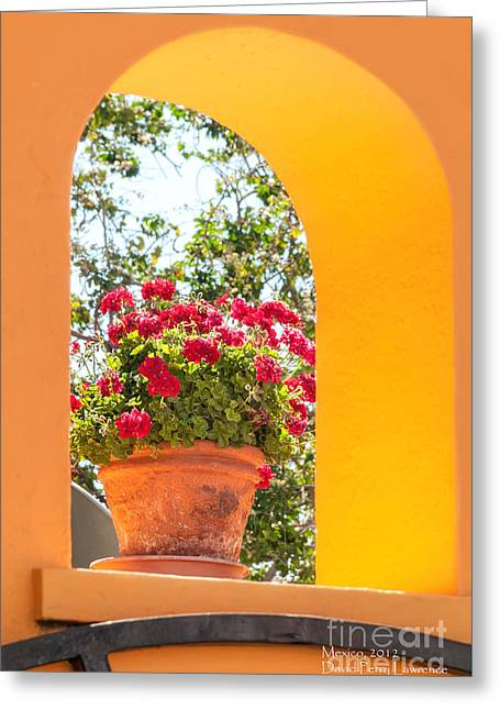 Greeting Card featuring the photograph Flowerpot In A Mexican Wall by David Perry Lawrence