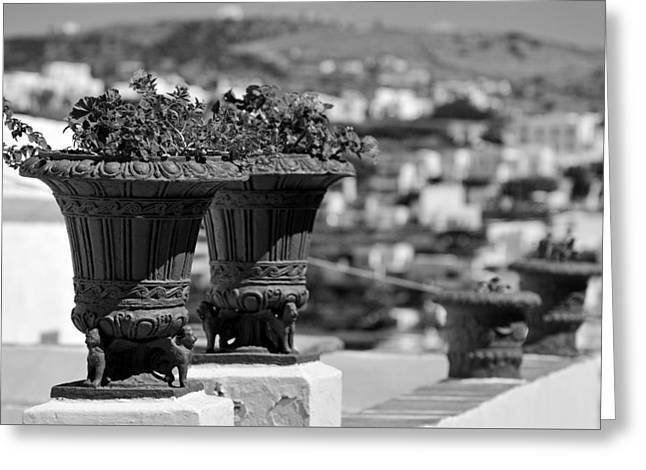 Flowerpots In Sifnos Island Greeting Card by George Atsametakis