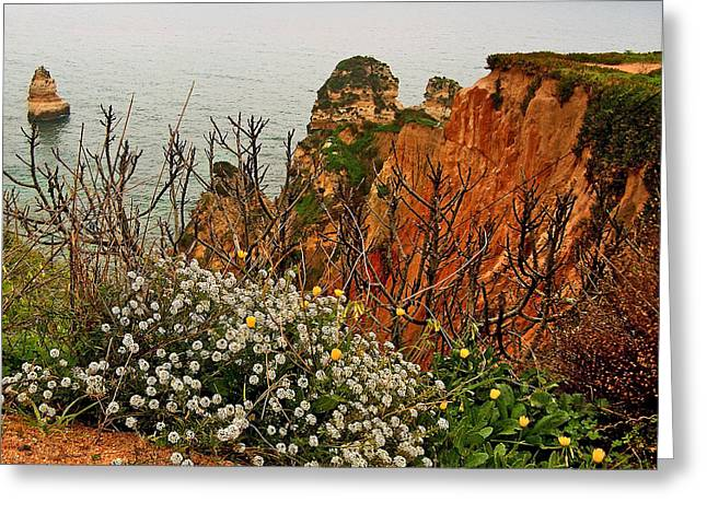Flowers And Cliffs Over The Atlantic Ocean Near Lagos-portugal Greeting Card by Ruth Hager