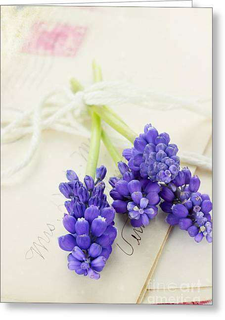 Flowers And Letters  Greeting Card