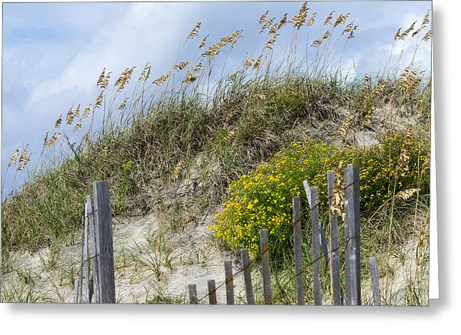 Greeting Card featuring the photograph Flowers And Sea Oats by Gregg Southard