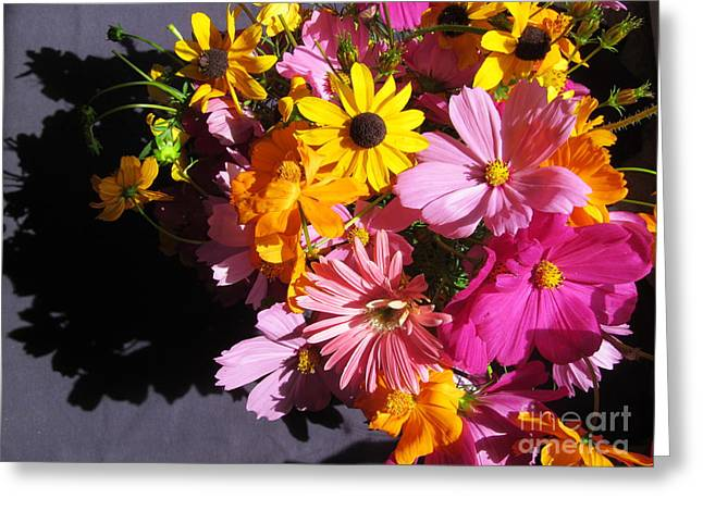 Flowers And Shadow Greeting Card