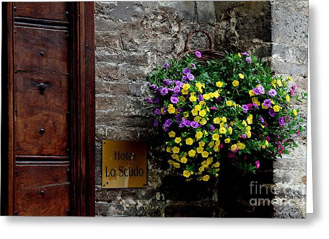Greeting Card featuring the photograph Flowers - Assisi by Theresa Ramos-DuVon