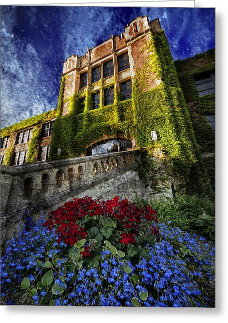 Flowers At Somsen Hall Greeting Card