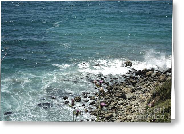 Greeting Card featuring the photograph Flowers By The Seashore by Carla Carson