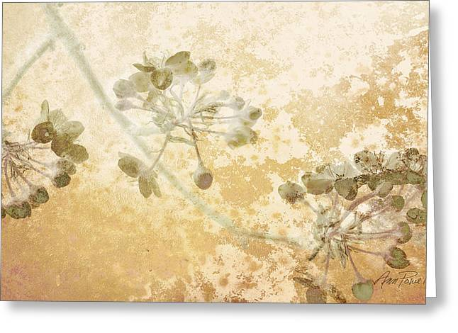 Flowers Delicate Buds  Greeting Card by Ann Powell