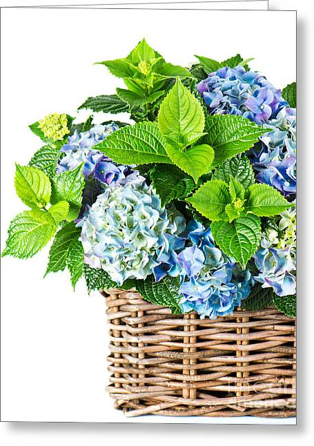 Flowers In Basket Greeting Card