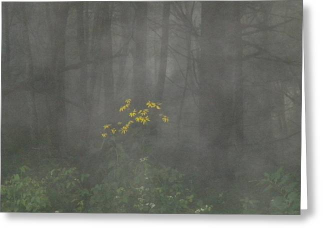 Greeting Card featuring the photograph Flowers In The Fog by Diannah Lynch