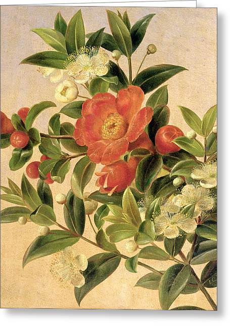 Flowers Greeting Card by Johan Laurents Jensen
