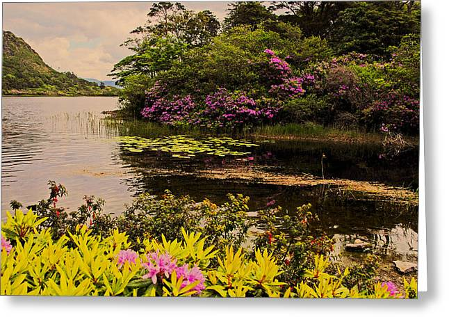 Flowers Of Ireland Lakes Greeting Card