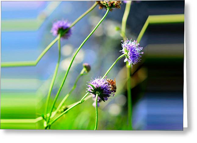 Flowers On Summer Meadow Greeting Card by Tommytechno Sweden