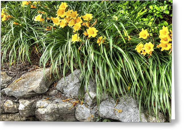 Flowers On The Edge Greeting Card by Honour Hall