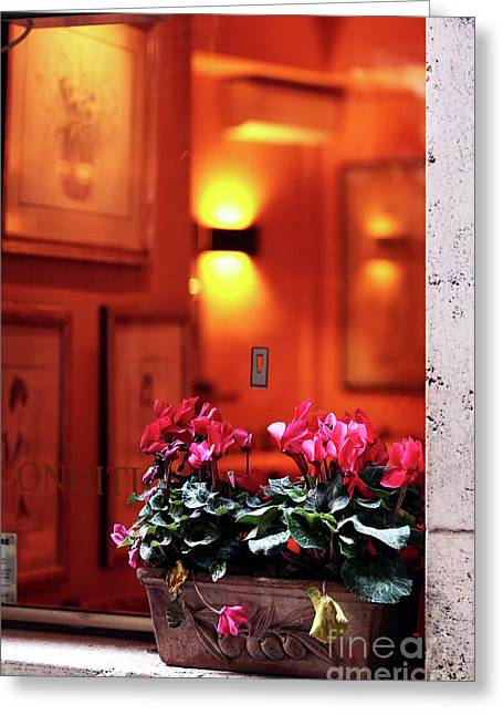 Flowers On The Ledge Greeting Card by John Rizzuto