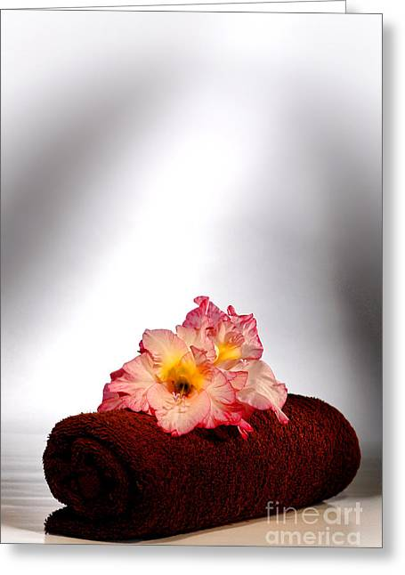Gladiolus Greeting Cards - Flowers on Towel Greeting Card by Olivier Le Queinec