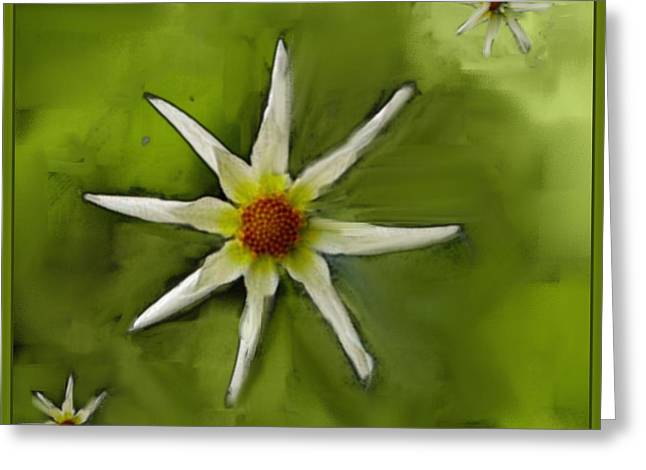 Flowers White Greeting Card by Nedunseralathan R